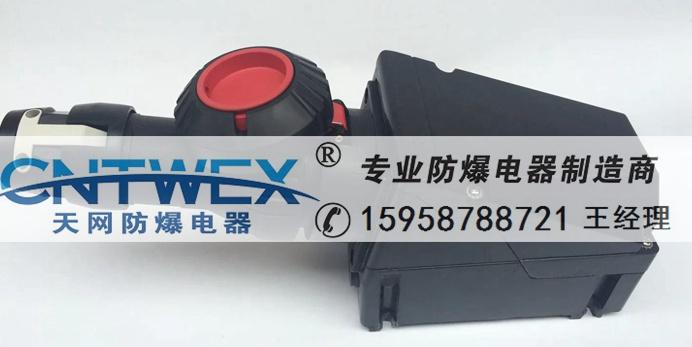 供应ZXAC5330-100A 防爆防腐蚀防尘防水插头插座