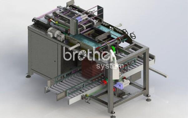 自动装箱设备供应-机械式装箱机-兄弟包装