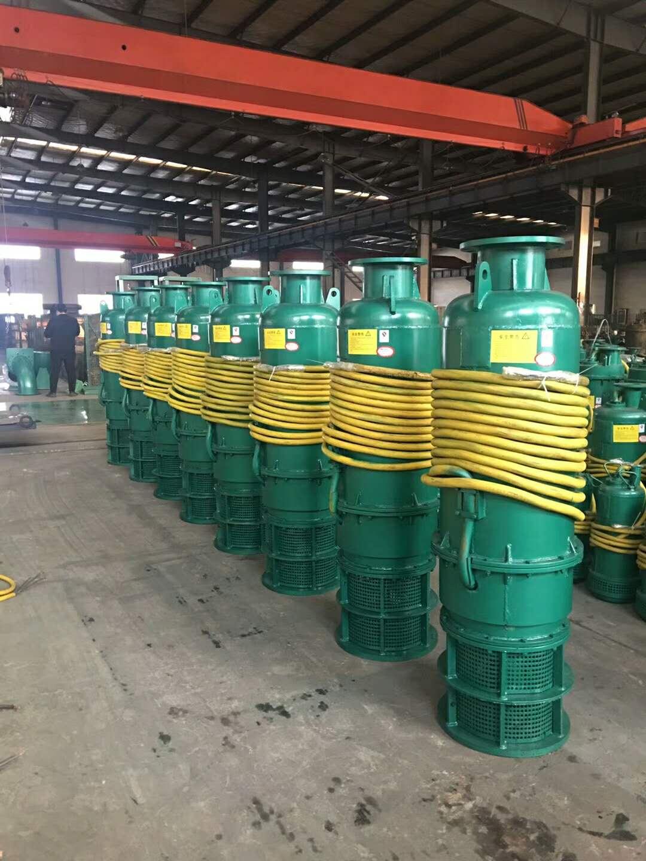 六安池州BQS70-130-55/N  隔爆型矿用电泵