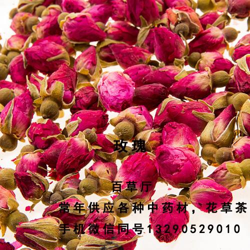 玫瑰花最新价格   怀菊花在哪里买到