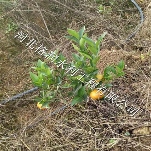 河北小管出流系统果树灌溉配套销售