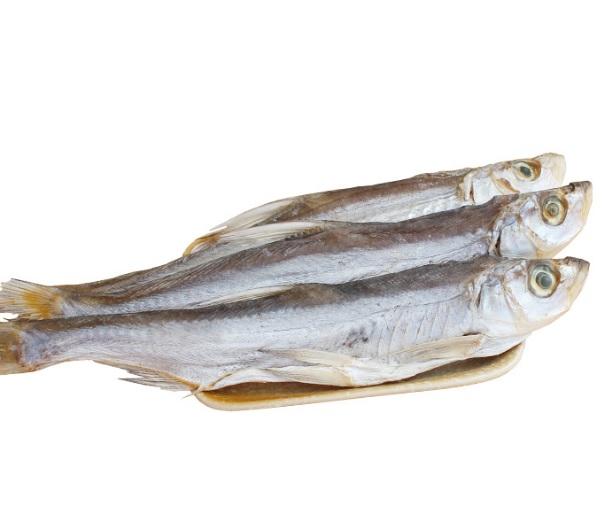 哪里有绍兴白鱼干烘干机?用冷风来烘品相和风味会不会好些?