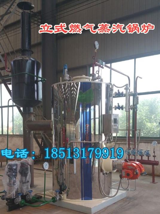 立式0.2吨燃气蒸汽锅炉厂家 价格