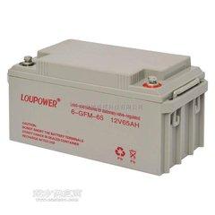 莱力蓄电池6-GFM-12/12V12AH代理商