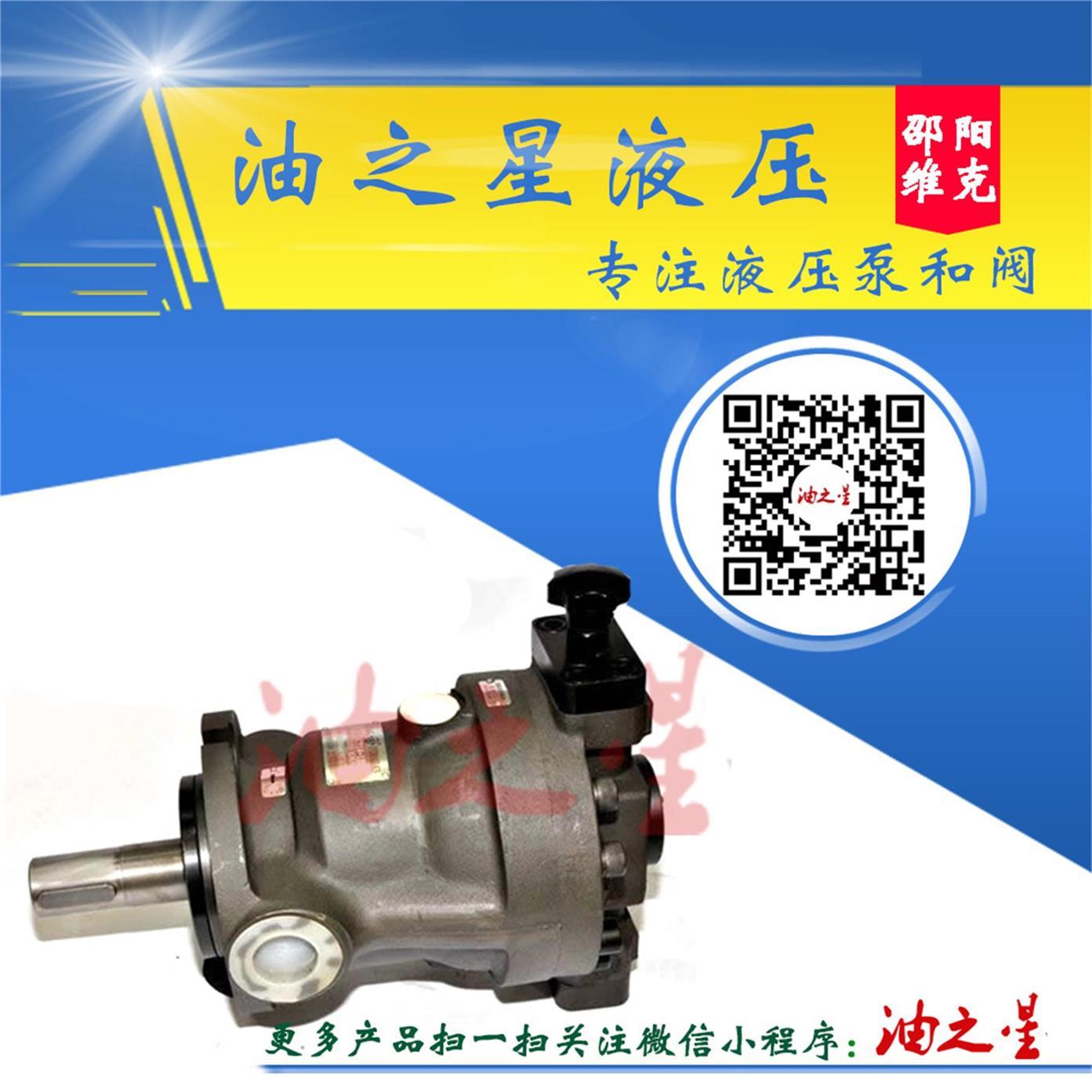 手动变量轴向柱塞泵SCY14-1B