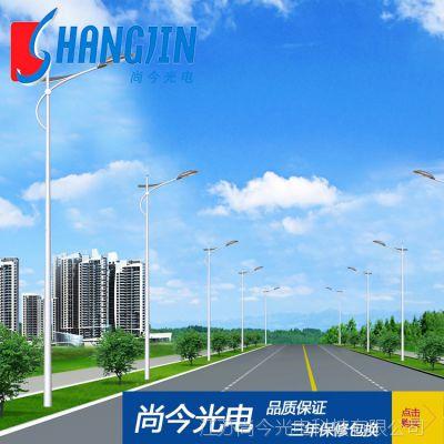 供應各式高質量單臂路燈道路照明燈 專業廠家直銷生產優質單臂燈