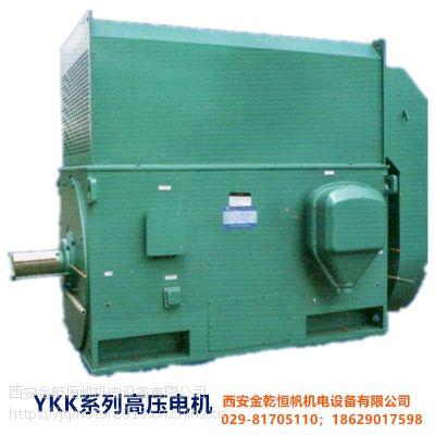 供应优质北京东方华盛高压三相异步电动机ykk6303-10 10kv 1600kw ip44