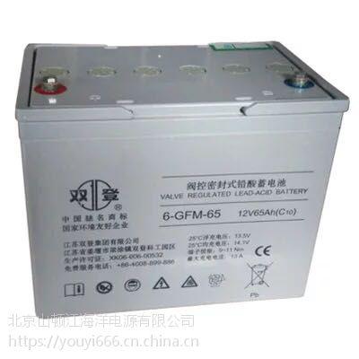 双登 蓄电池12v65ah 蓄电池质保三年总代理报价