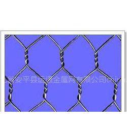 供应 六角、拧花网 、格宾网、石笼网、龟甲网、挂网