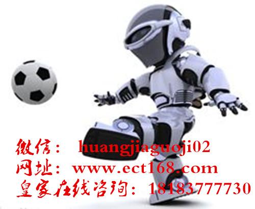 缅甸皇家国际机器人出售