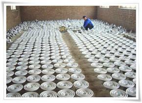 xwp-70双片陶瓷绝缘子(双层伞形)【厂家低价】