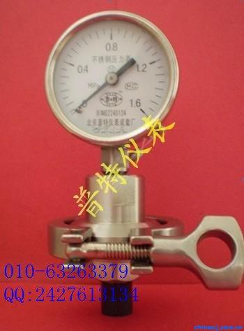 Y100MF法蘭隔膜耐震壓力表