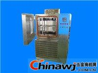 (低溫)濕熱恒定試驗箱    HS—010 梅香儀器