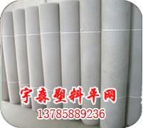 塑料平网-塑料养殖网-塑料平网厂-安平塑料平网