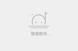 廣西寶世光科技有限公司Logo