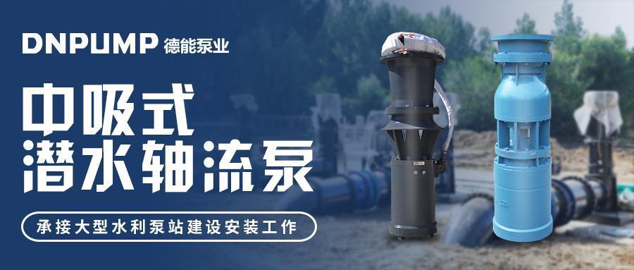 大流量中吸式潜水轴流泵