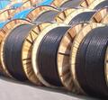 天津市電纜總廠橡塑電纜廠銷售部Logo