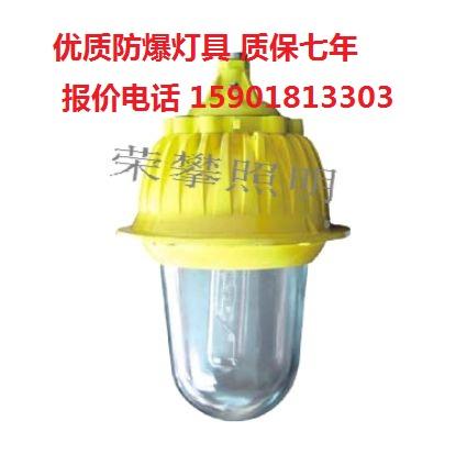 BFC8930 粉塵防爆內場強光泛光燈