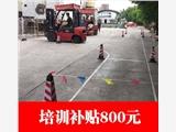 新聞:深圳哪里有電動叉車培訓在哪里培訓