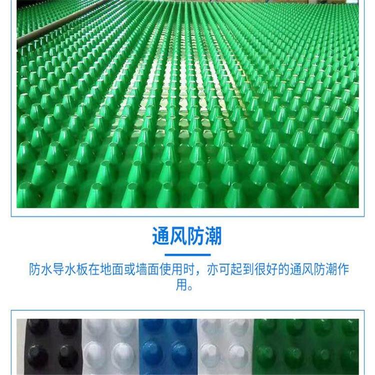 潮州H20排水板價格 4公分現貨排水板施工方法