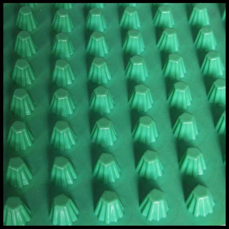 天津排水板廠家批發 各種型號疏水板