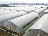 沭陽啟天溫室設備有限公司