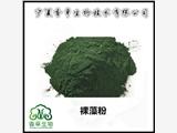 裸藻粉供應商  綠蟲藻粉98% 裸藻純粉 水溶性粉批發 裸藻提取物