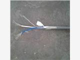 吉林防爆电缆YJV22价格