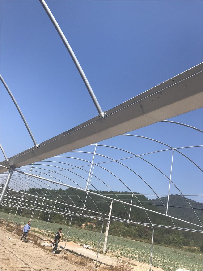 郑州椭圆管养殖大棚参考价格蔬菜大棚生产基地