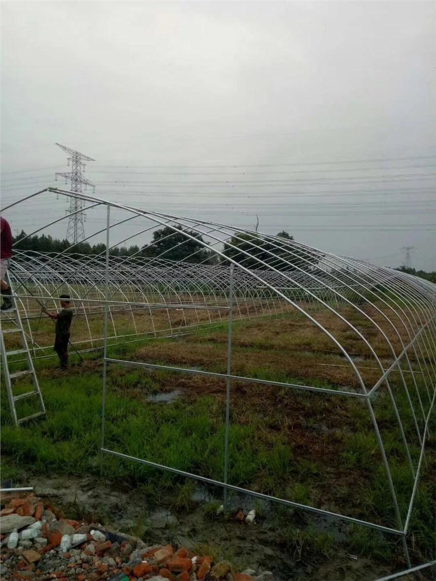 延安附近蔬菜大棚生產廠家