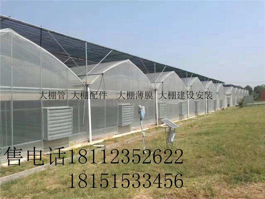 大棚钢管厂河南驻马店简易蔬菜大棚生产厂家