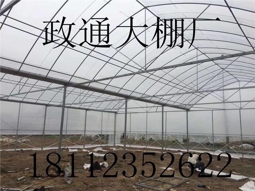 红花岗大棚管  大棚钢管价格  温室大棚钢管信誉保证