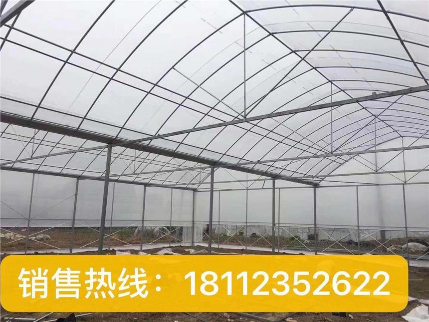 安徽亳州蔬菜大棚安徽亳州果树温室大棚