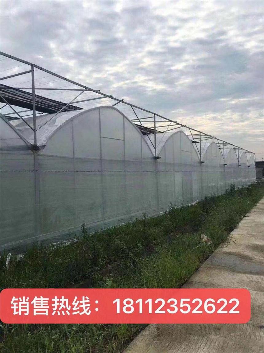 大棚钢管厂陕西铜川蔬菜大棚配件包工包料价格