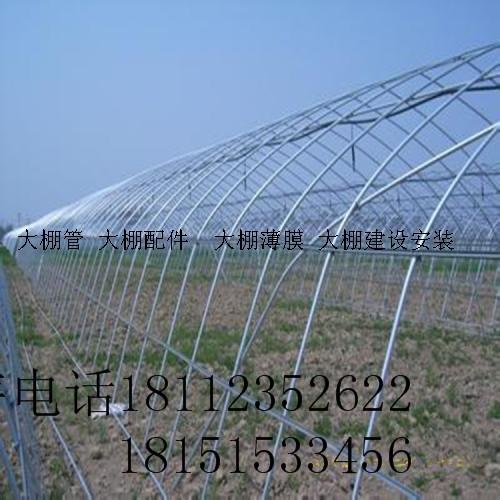 漢壽蔬菜大棚建造連棟大棚收費標準