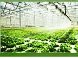 晋城草莓大棚产地无锡政通特钢