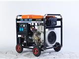 欧洲狮省油型的发电电焊机