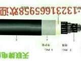 西寧鋁護套鐵路信號電纜PTYY-61X1.0廠家報價