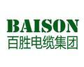 百胜电缆(上海)有限公司