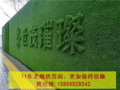 贵州铜仁江口县加密人造草坪围挡材质绿化工程