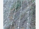 供甘肃兰州主动与被动防护网和张掖防护网报价