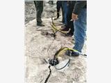 (液压简单操作设备挖基础破石机欢迎来厂)---(新闻)