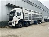 东风国六9米6活猪运输车报价多少钱