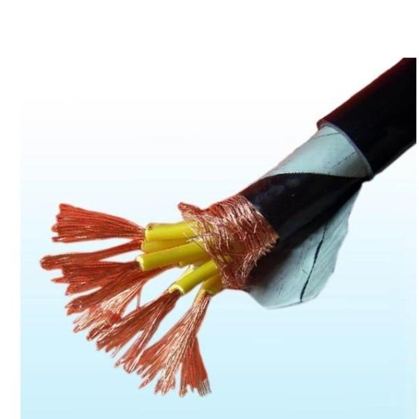 計算機電纜DJYPVP22