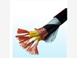 计算机电缆DJYPVP22