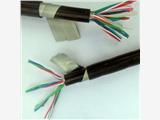包頭網線-六類4對屏蔽雙絞線型號規格