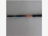 山東RS485電纜RS485-2*0.75