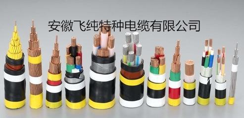 電力電纜YJGCFPB-6KV  4*35  安徽飛純特種電纜
