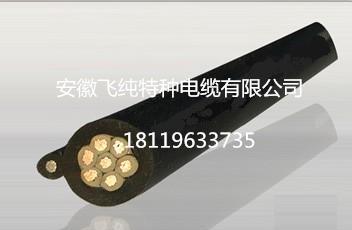 N2XCY 1x185rm 電纜 安徽飛純牌