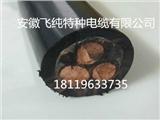 船用電纜AGCFR 4*10 安徽飛純牌